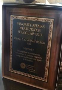 MMA Award