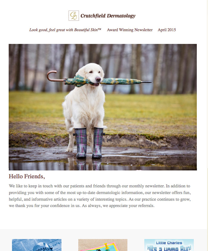 Cute Dog holding umbrella