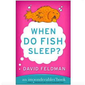 When do fish sleep