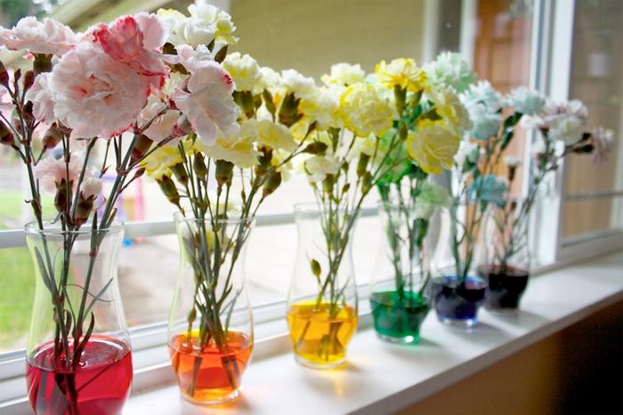 dye white carnations