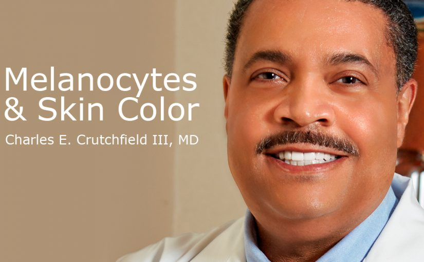 Melanocytes and skin colors