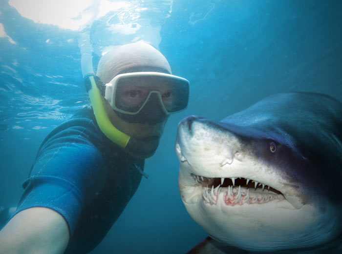 man selfie with shark