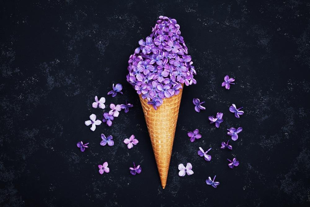 ice cream lilac