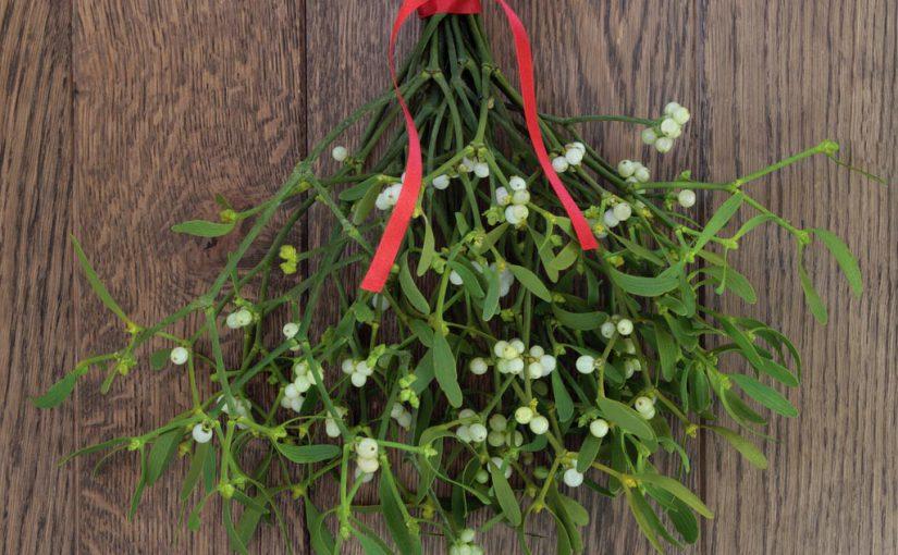 Where did the custom of kissing under the mistletoe originate?